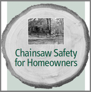 Chainsaw kickback safety guards