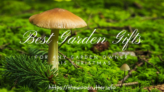 Best Unique Gardening Gift Ideas