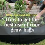 best grow bags
