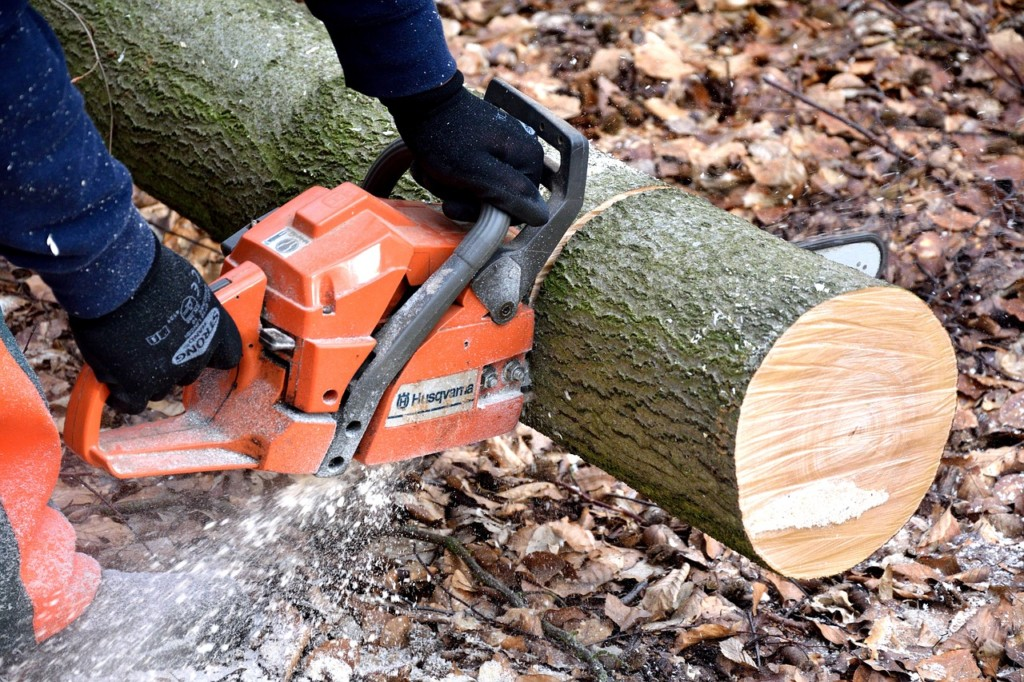 Electric Power Chainsaw for Your Gardening
