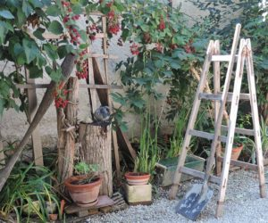 Which Type of Step Ladder is Better for the Garden?