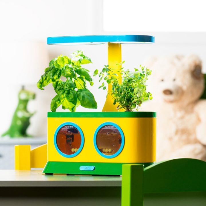Herb Seed Pod Kit