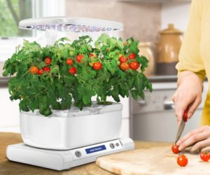 TOP 5 Best Sprout LED Aerogarden Reviews and Guide