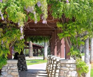Ideas To Decorate More Out Your Pergola On A Budget For This Summer
