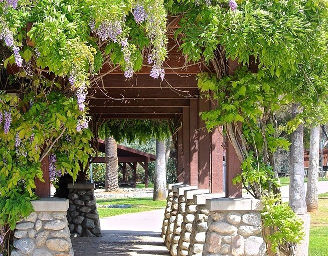 Decorate More Out Your Pergola On A Budget For This Summer