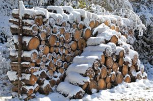Store Firewood Outside In Winter