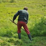 How to Edge the Lawn Perfectly When Mowing for Your Garden