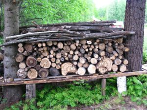 Best Way to Cover a Woodpile from Rough Weather