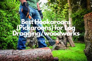 Best Hookaroons (Pickaroons)
