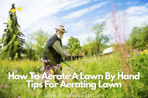 tips for aerating lawn