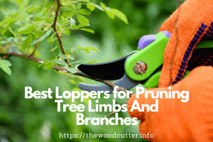 Best Loppers for Tree Limbs & Shrubs