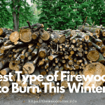 Best Firewood Types for Your Fireplace
