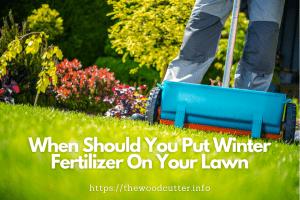 Should I Fertilize My Lawn In The Winter?