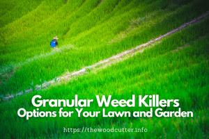 Best Granular Weed Killers