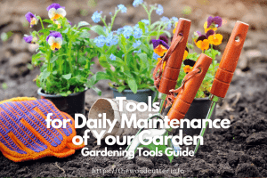 Tools for Daily Maintenance of Your Garden