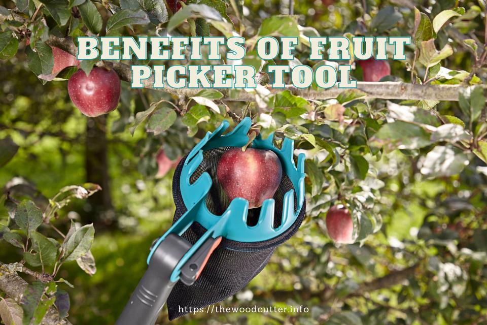 Benefits of Fruit Picker Tool