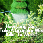 How Long Does It Take to Work for Granular Weed Killer