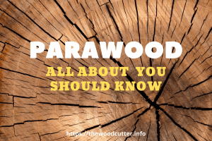 All About ParaWood You Should Know